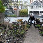 Aanleg tuin aan de Oude Rijn in Leiden door hoveniersbedrijf Van Nieuwland Tuinen